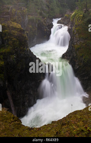 Little Qualicum Falls Provincial Park, Vancouver Island, British Columbia, Canada - Stock Photo