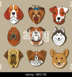 Vector illustration of different dogs breed. Vector illustration, EPS 10 - Stock Photo