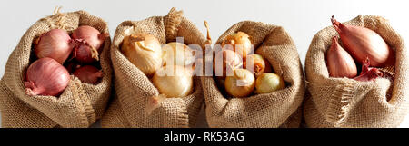 Set of various onion harvest sorted in burlap sack bags and arranged in a row, viewed in close-up on white background - Stock Photo
