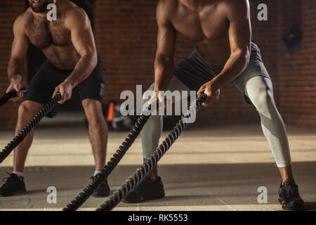 Two multiethnic shirtless male bodybuilders are exercising with battling ropes. The high intensity and fast nature of training with a rope will effect - Stock Photo