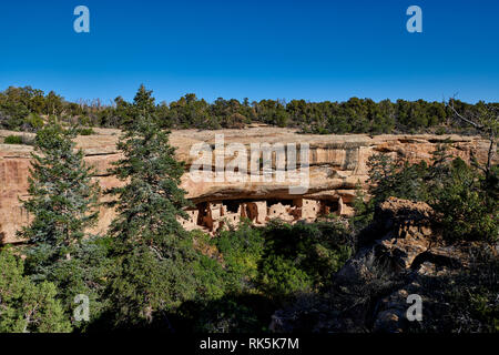 Spruce Tree House, Cliff dwellings in Mesa-Verde-National Park, UNESCO world heritage site, Colorado, USA, North America - Stock Photo