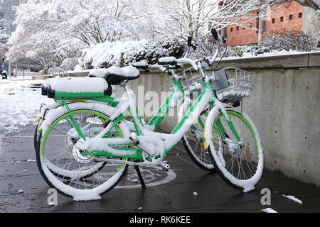 Bellevue, WA, USA. 9th Feb, 2019. Rental Lime e-bikes covered in snow - Stock Photo