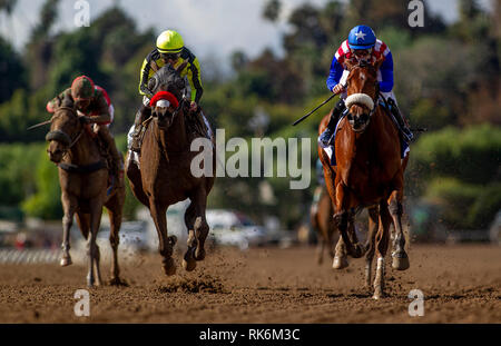 Arcadia, CA, USA. 9th Feb, 2019. February 09, 2019: Bellafina with Flavien Prat (right) defeats Enaya Alrabb with Mike Smith to win the Las Virgenes Stakes at Santa Anita Park on February 09, 2019 in Arcadia, California . Evers/Eclipse Sportswire/CSM/Alamy Live News - Stock Photo