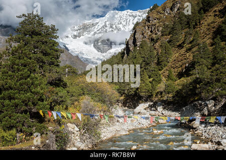 Prayer flags above a river and Gangchhenta (Great Tiger Mountain) en route to Laya, Gasa District, Snowman Trek, Bhutan - Stock Photo