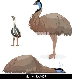 vector cartoon animal clipart: ostrich emu bird - Stock Photo