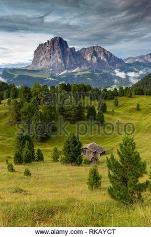 Val Gardena. Sassolungo and Sassopiatto peaks. The Dolomites. - Stock Photo