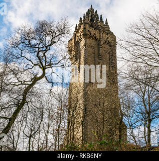 Looking up at Wallace Monument through Winter trees, Abbey Craig, Stirling, Scotland, UK - Stock Photo