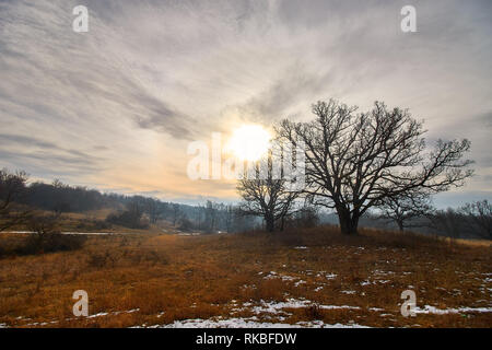 Beautiful autumn sunset colors over the meadow with trees - Stock Photo