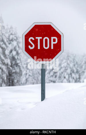 Stop sign on a snow covered road - Stock Photo