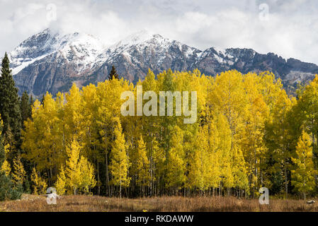 East and West Beckwith Mountains viewed from Kebler Pass Road. Located in Gunnison National Forest, Colorado. - Stock Photo