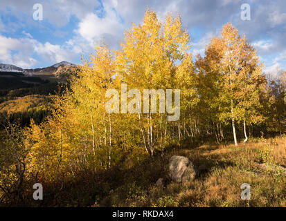 View of East Beckwith Mountain and Lost Lake Slough from Lost Lake Campground in Gunnison National Forest. - Stock Photo