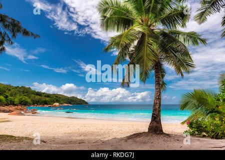 Paradise Anse Lazio Beach on Praslin island, Seychelles. - Stock Photo