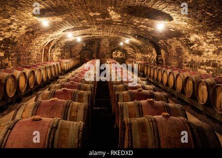 Wine cellar, Domaine François et René Leclerc, Gevrey-Chambertin, Côte de Nuits, Côte d´Or, Burgundy Region, Bourgogne, France, Europe - Stock Photo