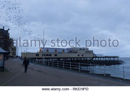 Aberystwyth, Ceredigion, Wales, UK 11th February 2019 UK weather: Cloudy start to the morning in Aberystwyth as the starlings leave their overnight roost from the underside of the Pier. Credit: Ian Jones/Alamy Live News - Stock Photo