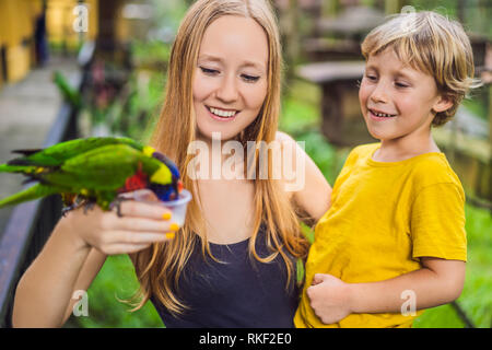 Mom and son feed the parrot in the park. Spending time with kids concept. - Stock Photo