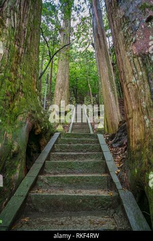 Kumano Kodo pilgrimage route.Tsugizakura Oji. Ancient shrine with centuries old trees. Nakahechi. Wakayama Prefecture. Kii Peninsula. Kansai region. - Stock Photo
