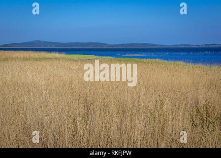 Gardno Lake seen from viewing platform in strict protection area of Slowinski National Park, located on the Baltic coast in Pomeranian Voivodeship of - Stock Photo