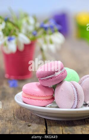 variegated sweet macaroons and spring flowers in small pot. - Stock Photo