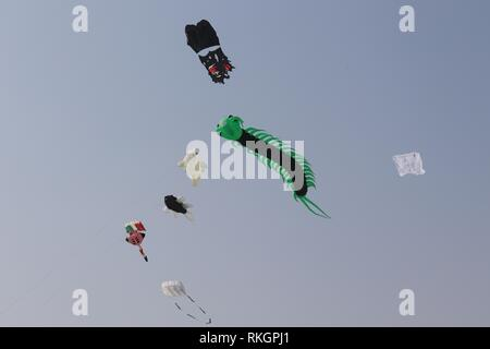 International Kite Festival-2019, Ahmedabad-India - Stock Photo