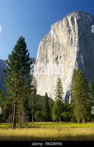 Capitan view in Yosemite Valley, California, United States. - Stock Photo