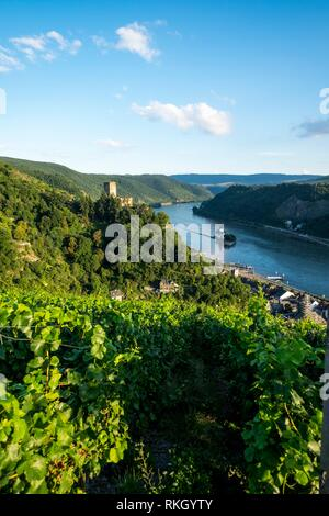 Gutenfels castle with vineyards in the foreground in Rhine river Germany Europe. - Stock Photo
