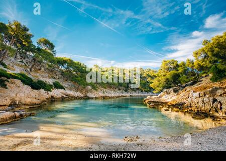 Beautiful nature of Calanques on the azure coast of France. Coast near Cassis in South France. Bay, pine forest and sunny morning blue sky. - Stock Photo