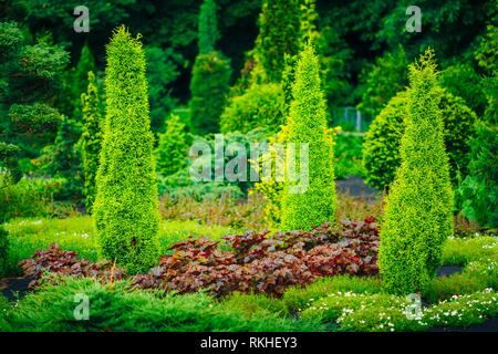 Flowerbed, Small Green Trees And Cuted Bushes In Garden. Beautiful Summer Park. Landscaping. Garden Design. - Stock Photo