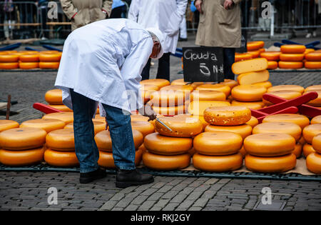 Cheese tester and cheese rounds, Alkmaar Cheese Market, Holland, The Netherlands - Stock Photo