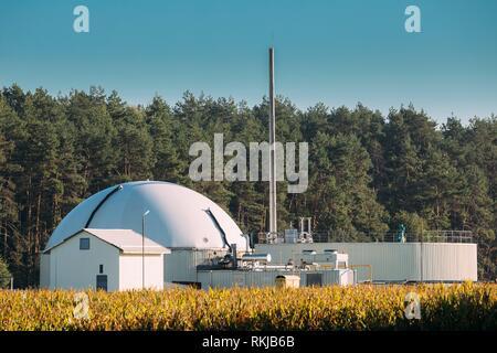 Biogas Plant Or Bioreactor For Fermentation Of Chicken Manure. - Stock Photo