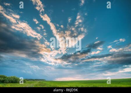 Countryside Rural Field Landscape Under Scenic Spring Blue Cloudy Dramatic Sky With White Fluffy Clouds. Skyline. Agricultural Landscape Of Green - Stock Photo