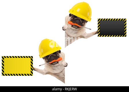 frolic mechanic construction worker pug dog with constructor helmet, holding orange screwdriver and blank yellow and black sign board, isolated on whi - Stock Photo