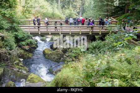 Triberg, Germany - August 17, 2017: Triberg Falls, one of the highest waterfalls in Germany on August 17, 2017. - Stock Photo