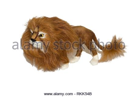 Lion king of beasts, Isolated, illustration. - Stock Photo