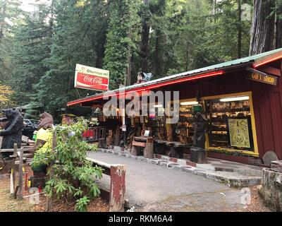 Eureka, CA - November 19, 2018: Confusion Hill oddity park in the California Redwoods National and State Parks in Northeast California. - Stock Photo