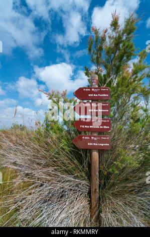 The Ebre Delta, The Ebre Delta Natural Park, Terres de l'Ebre, Tarragona, Catalonia, Spain. - Stock Photo