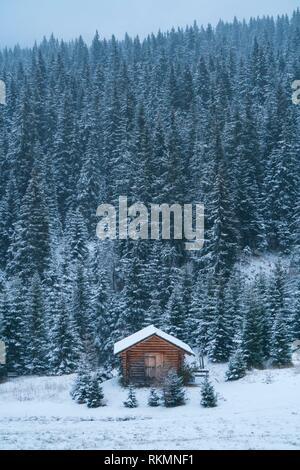Snowing in autumn, Corvara in Badia, Dolomites, Unesco World Heritage Site, Italy, Europe. - Stock Photo