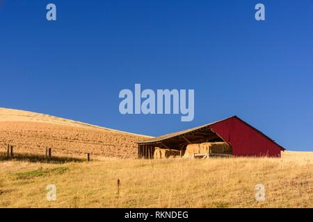 Mowing and harvest patterns in the Palouse landscape in late summer, Whitman County, Washington, USA. - Stock Photo