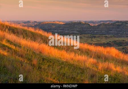 Grassy slopes and badlands in late summer, from Buck Hill, Theodore Roosevelt NP (South Unit), North Dakota, USA.