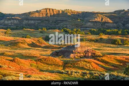 The badlands in late summer, from Buck Hill, Theodore Roosevelt NP (South Unit), North Dakota, USA.