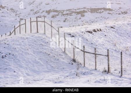 Frosted fenceline in an autumn prairie, Havre, Montana, USA. - Stock Photo