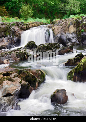 A summer view of the fast flowing Cenarth Falls in Carmarthenshire, South Wales. - Stock Photo