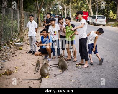 Sihanoukville, Preah Sihanouk, Cambodia. 12th Feb, 2019. Chinese tourists feed macaque monkeys near Independence Beach in Sihanoukville. There are about 50 Chinese casinos and resort hotels either open or under construction in Sihanoukville. The casinos are changing the city, once a sleepy port on Southeast Asia's ''backpacker trail'' into a booming city. The change is coming with a cost though. Many Cambodian residents of Sihanoukville have lost their homes to make way for the casinos and the jobs are going to Chinese workers, brought in to build casinos and work in the casinos. (Credit - Stock Photo