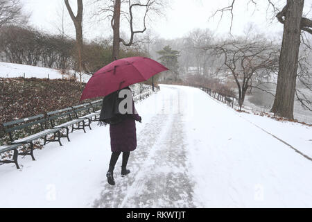 New York, New York, USA. 12th Feb, 2019. Snow hits New York City on Tuesday Credit: William Volcov/ZUMA Wire/Alamy Live News - Stock Photo