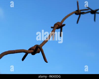 Rusty barbed wire isolated on blue sky background. Concept of boundary, prison, war or immigration - Stock Photo