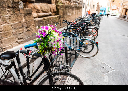 Firenze, Italy outside exterior of architecture building in Florence Tuscany with purple flowers on bicycle with row of bikes on rack - Stock Photo