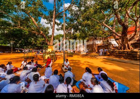 A Novice Buddhist Monk gives a lesson, Sri Maha Bodhi, the sacred bodhi tree. Anuradhapura, North Central, Sri Lanka. - Stock Photo