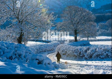 A man walks a dogon in a wintry landscape near Builth Wells, Powys, Wales, UK. - Stock Photo