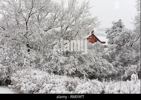 A wintry landscape near Builth Wells, Powys, Wales, UK. - Stock Photo