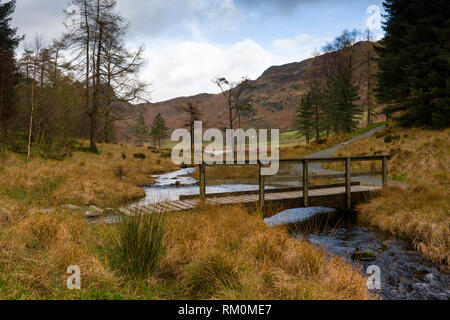 Footbridge over Bleamoss Beck at Blea Tarn in the Lake District National Park, Cumbria, England. - Stock Photo