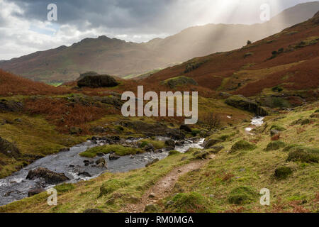 Bleamoss Beck flowing towards Little Langdale in the Lake District National Park, Cumbria, England. - Stock Photo